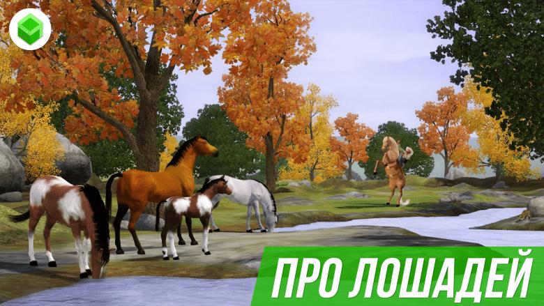 Игры про лошадей: играть онлайн бесплатно.