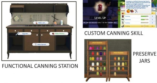 https://cdn.gamer-network.net/2018/usgamer/sims-4-canning-station.jpg