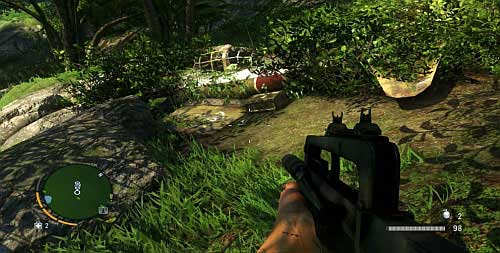 Чуть севернее небольшого пруда, есть крушение самолета - Северный остров - Южная часть - Объекты культа - Far Cry 3 - Руководство по игре и прохождение игры