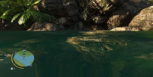 Прежде чем отправиться туда, приготовьте шприц для глубокого погружения - Северный остров - Северный полуостров - Объекты культа - Far Cry 3 - Руководство по игре и прохождение игры