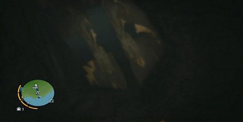 Дальнейший путь будет заблокирован досками, которые рухнут, когда вы столкнетесь с ними - Северный остров - Северный полуостров - Объекты культа - Far Cry 3 - Руководство по игре и прохождение игры