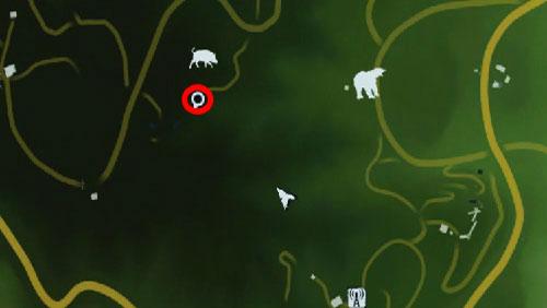 4 - Южный остров - Северо-западная часть - Культовые объекты - Far Cry 3 - Руководство по игре и прохождение игры