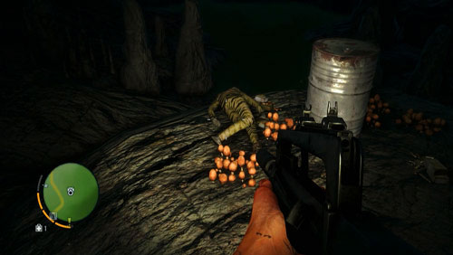 The corpse, and the letter, is at the end of the tunnel - The Northern Island - North-eastern part - Letters of the Lost - Far Cry 3 - Game Guide and Walkthrough