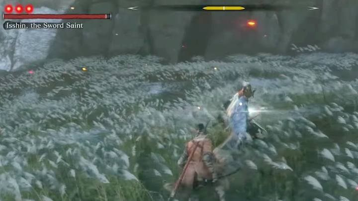 Every time you see a flash of the boss sword and hear a grunt, they indicate that hes charging a special attack: a straight cut in front of you or a blow around the opponents axis - Genichiro & Isshin, the Sword Saint   Sekiro Shadows Die Twice Boss Fight - Bosses - Sekiro Guide and Walkthrough