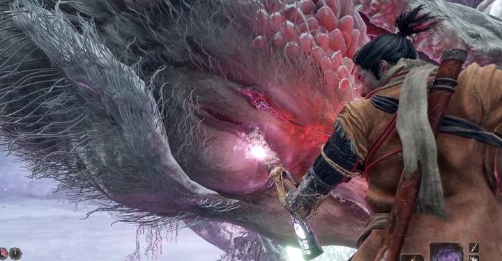 Apply the final blow, climbing the swords next to the dragons head - Divine Dragon - main boss in Sekiro: Shadows Die Twice game - Bosses - Sekiro Guide and Walkthrough