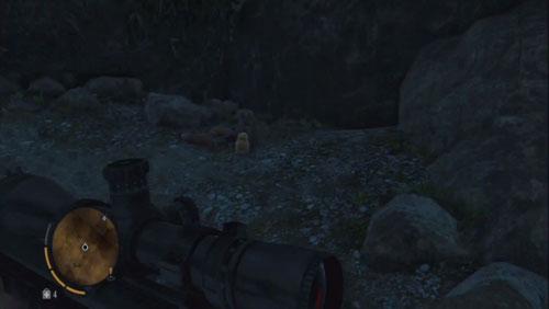 Переместитесь в следующую пещеру, где находится статуэтка - Северный остров - Северо-западная часть - Объекты культа - Far Cry 3 - Руководство по игре и прохождение игры
