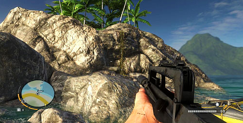 In the southern part of the peninsula, there is a vine that you need to take to reach higher - The Northern Island - Northern part - Cult Objects - Far Cry 3 - Game Guide and Walkthrough