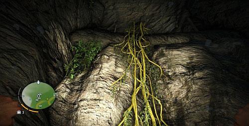 Перепрыгните через большую дыру в земле или поплавайте под скалистой платформой, если вы упали в воду, и заберитесь на лозу - Северный остров - Северо-восточная часть - Объекты культа - Far Cry 3 - Руководство по игре и прохождение игры