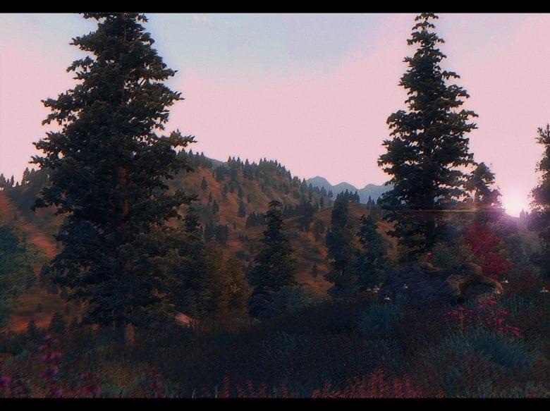 Изображение выглядит как дерево, внешний, небо, трава Автоматически созданное описание