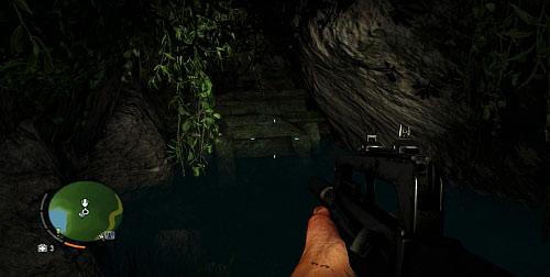 Вы окажетесь перед водопадом, за которым вам нужно плыть - Северный остров - Юго-западная часть - Культовые объекты - Far Cry 3 - Руководство по игре и прохождение игры