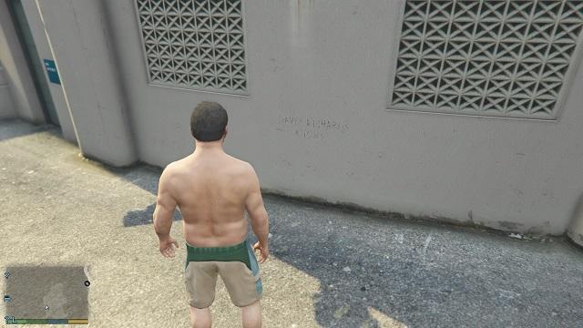 Последняя надпись была найдена!  - Надписи - Тайна убийства - Руководство по игре Grand Theft Auto V