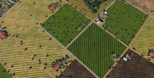 If you have large tracts of fertile land focus on food production - Citys Specialization - Development of a metropolis - Cities XXL - Game Guide and Walkthrough