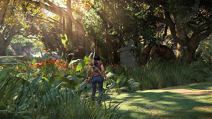 6 - 4 - Treasures in Wester Ghats | Secrets - Secrets - Uncharted: The Lost Legacy Game Guide