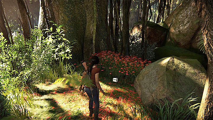 This is one of the better-hidden treasures and to find it, you have to go to the forest southwards of Shivy fort - 4 - Treasures in Wester Ghats | Secrets - Secrets - Uncharted: The Lost Legacy Game Guide