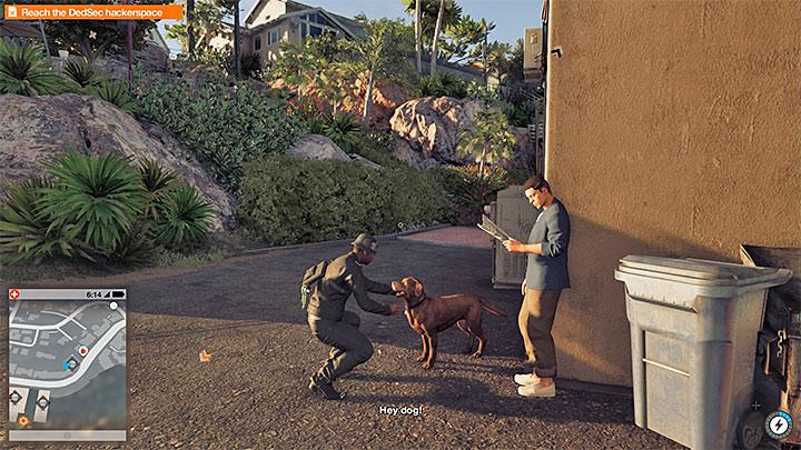 По городу можно встретить дружелюбных собак - Watch Dogs 2 Список достижений / трофеев - Основы - Руководство по игре Watch Dogs 2