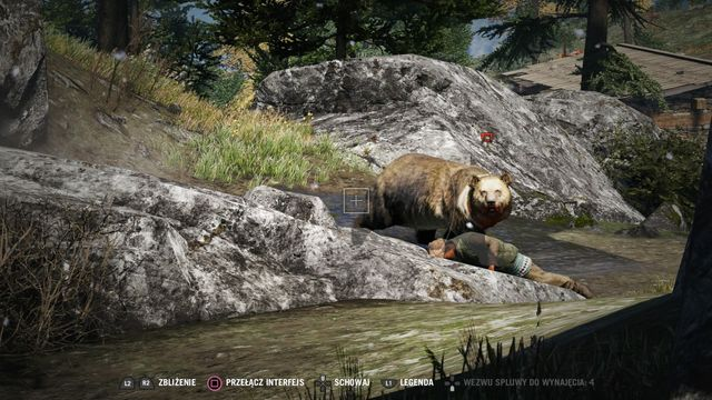The bear is very irritated - in the case of a charge, get off its way. - Kyrat Fashion Week - Activities - Far Cry 4 - Game Guide and Walkthrough