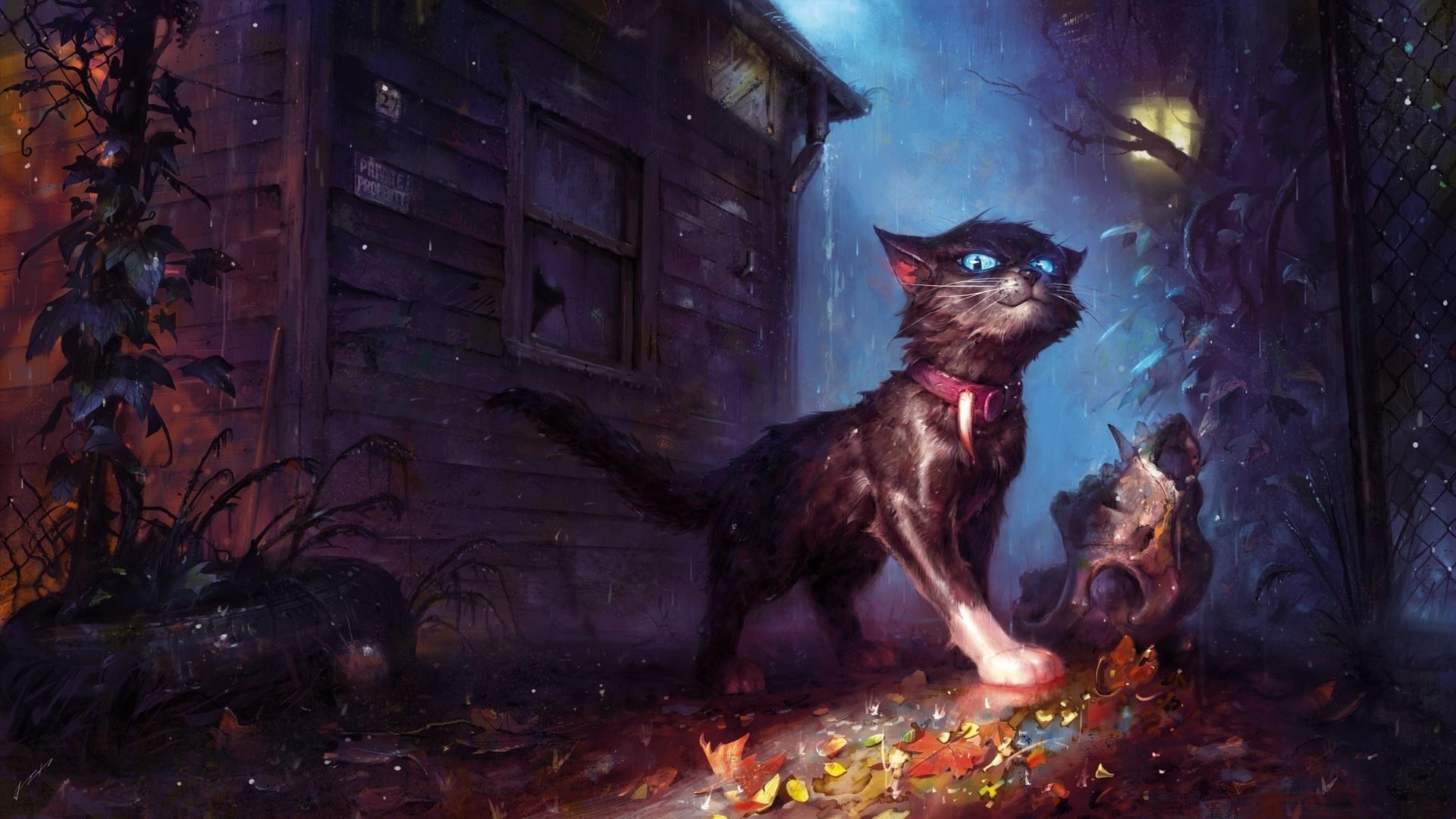 Мистические обои на телефон с котами