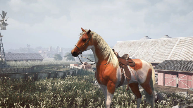 Horse Shelter 2022