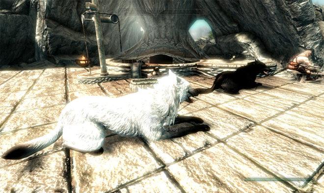 Dogs of Skyrim