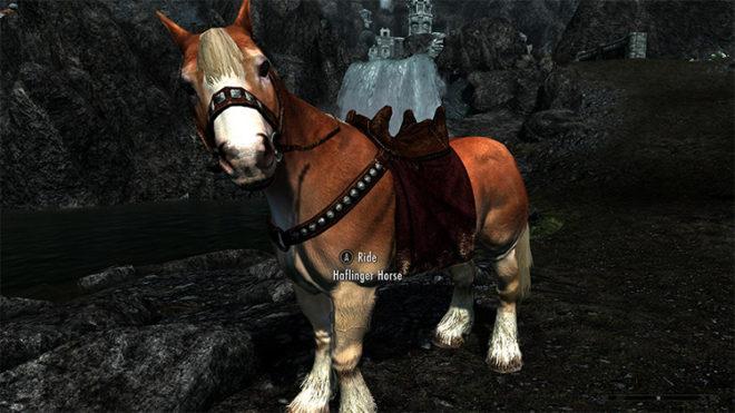 Immersive Horses