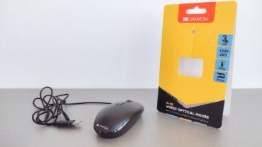 Обзор мыши Canyon CNE-CMS10B – Для бюджетного офисного гейминга?
