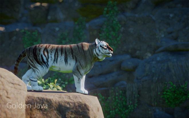 Extraordinary Tigers