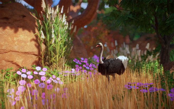 Vegetation Tolerance for All Animals